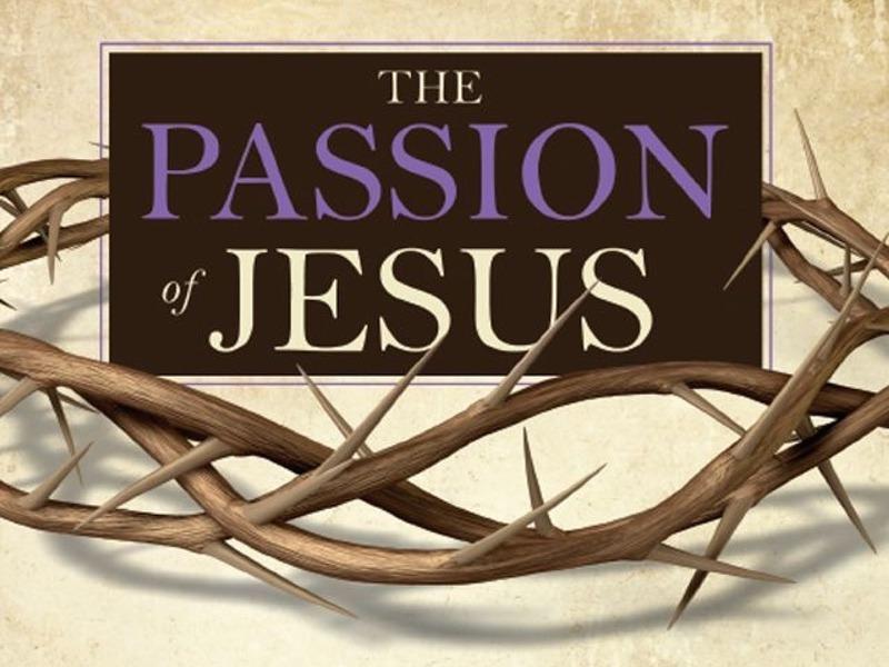 The Passion of Jesus – Shepherding Resource
