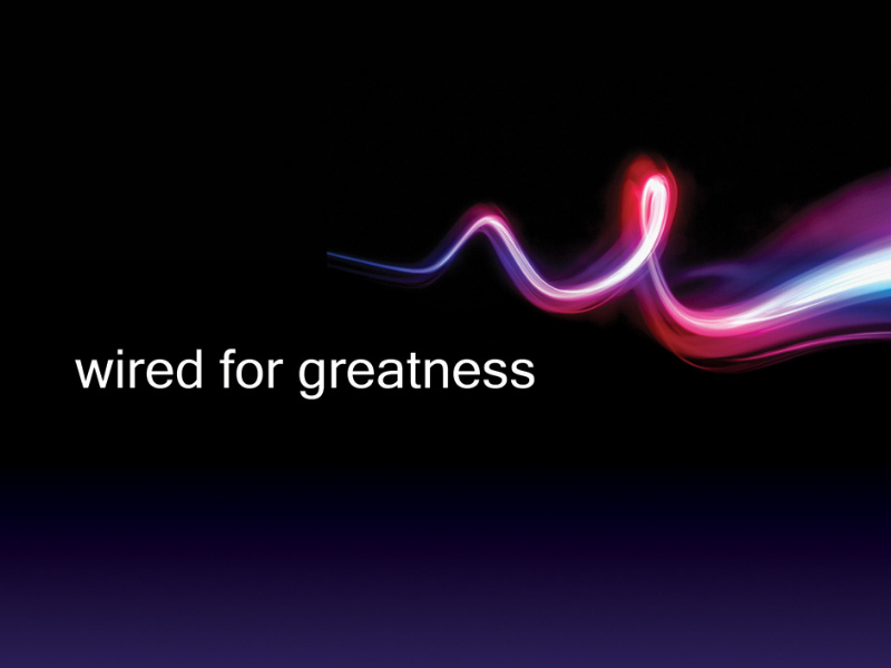 Wired for Greatness – Shepherding Resource